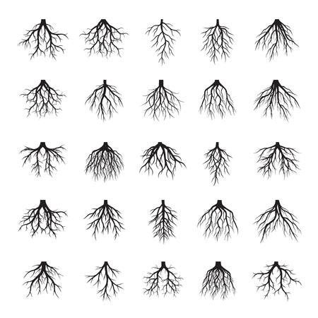Set of Black Tree Roots. Vector Illustration.