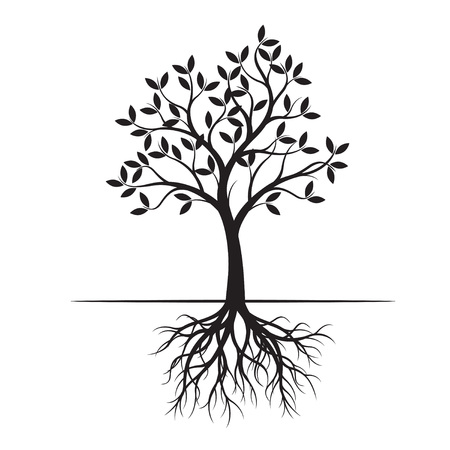 Black Spring Tree with root. Vector Illustration. Plant in garden.