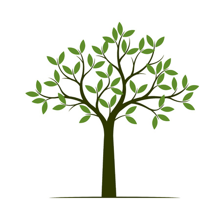 Green Spring Tree. Vector Illustration. Plant in garden.