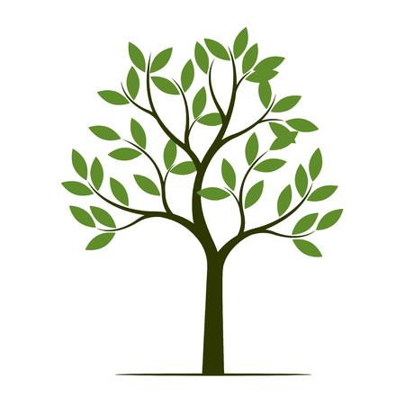 Green summer Tree. Vector Illustration. Plant in garden.