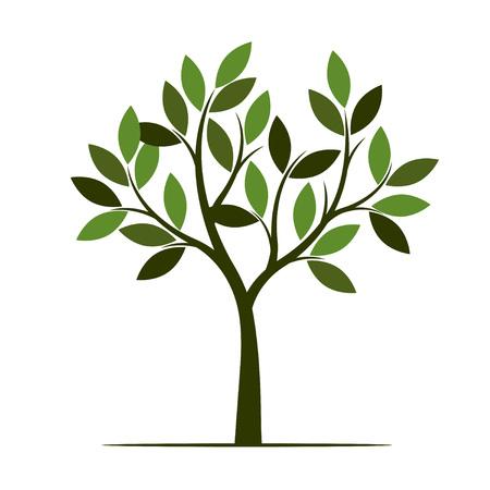 Árbol de verano verde. Ilustración de vector. Planta en jardín. Ilustración de vector