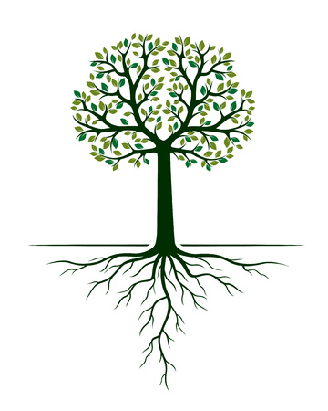 Green Tree and Roots. Vector Illustration. Plant and Garden. Illustration
