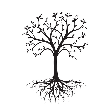 Black naked Tree with leaves and Roots on white background. Vector Illustration. 向量圖像