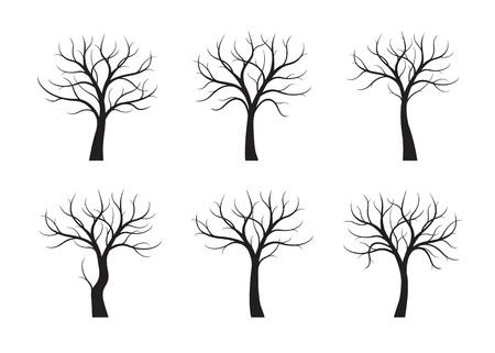 Set of Black Trees without leaves on white background. Vector Illustration.