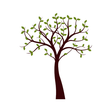 Spring Tree with leaves on white background. Vector Illustration.