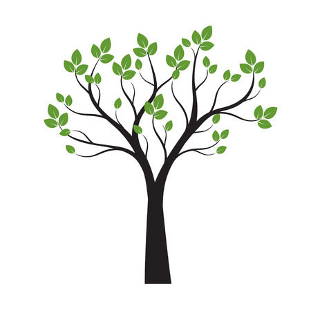 Black Tree with green Leaves on white background. Vector Outline Illustration.