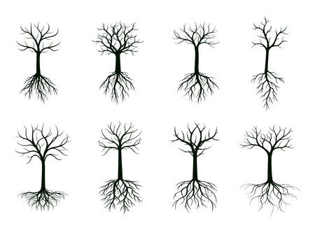 Set di alberi nudi neri con radici. Illustrazione di vettore. Pianta e giardino.