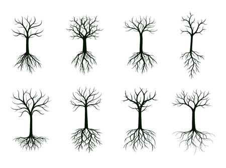 Set of Black Naked Trees with Roots. Vector Illustration. Plant and Garden.