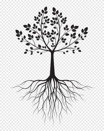 Black Tree with Roots on transparent background. Vector Illustration. Isolated object.