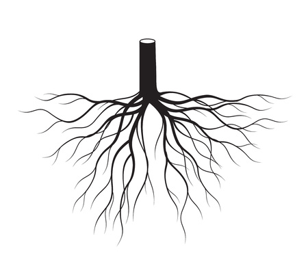 Shape of Black Tree Roots. Vector Illustration. Plant and Garden.