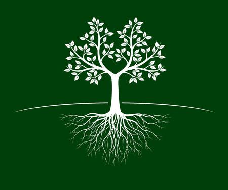 Árbol de la vida blanco con raíces sobre fondo verde. Ilustración de vector. Objeto aislado.