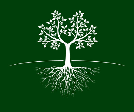 White Tree of Life with Roots on green background.  Vector Illustration. Isolated object.