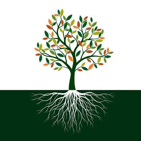 Color Tree of Life with Roots. Vector Illustration. Isolated object.