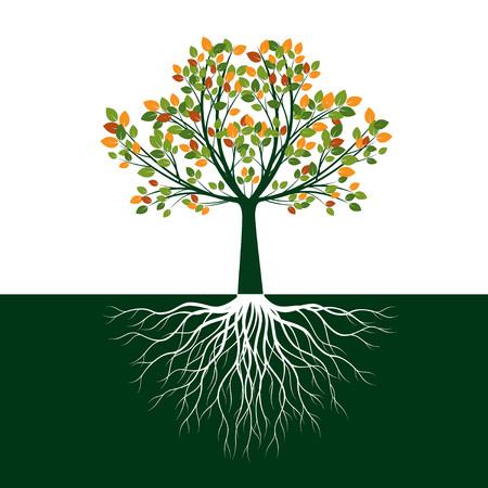 Árbol de la vida de color con raíces. Ilustración de vector. Objeto aislado.