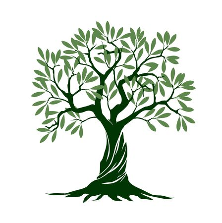 Green Olive Tree on white background. Vector Illustration and concept pictogram. Plant in garden.