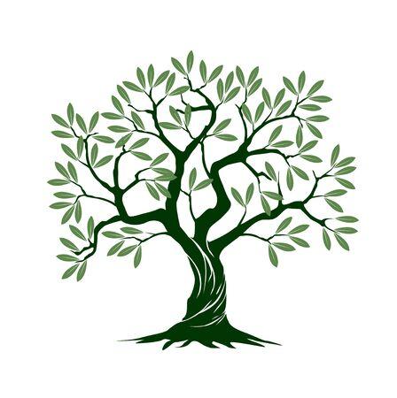 Grüner isolierter Olivenbaum auf weißem Hintergrund. Vektor-Illustration und Konzept-Piktogramm. Im Garten pflanzen.