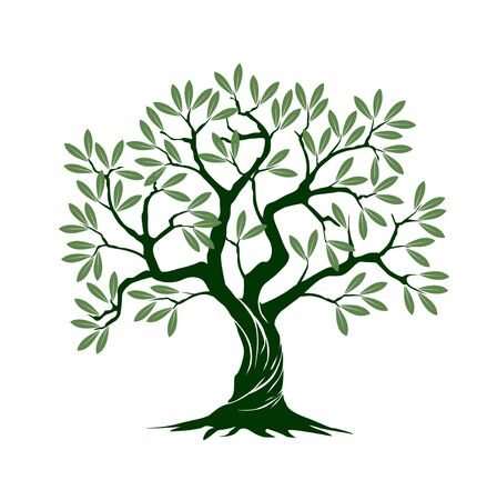 Green Isolated Olive Tree on white background. Vector Illustration and concept pictogram. Plant in garden.