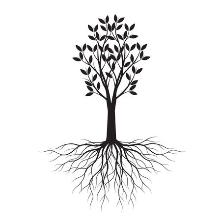 Black shape of Tree with Leaves and Roots. Vector outline Illustration. Plant in Garden. Vectores