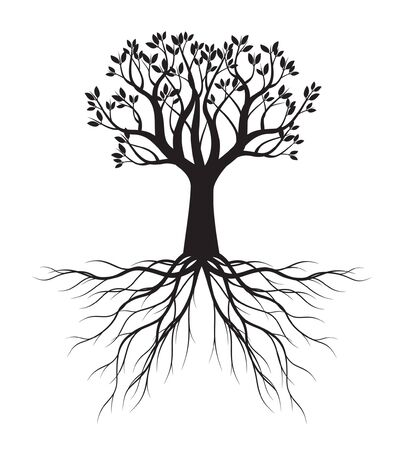 Black shape of Tree with Leaves and Roots. Vector outline Illustration. Plant in Garden. Ilustración de vector