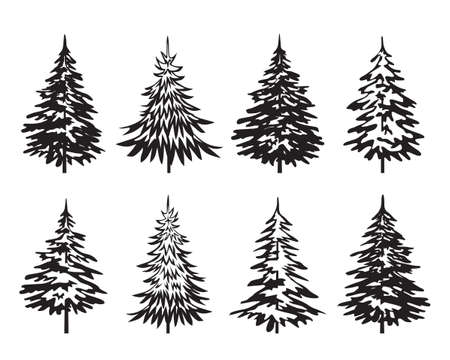 Black Spruce Trees. Winter season design elements and simply pictogram. Isolated vector xmas Icons and Illustration.