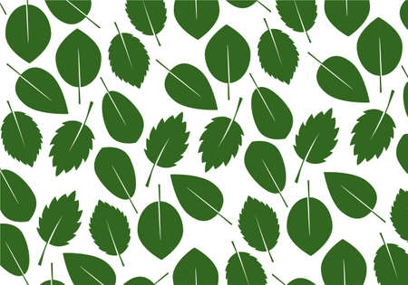 Set of green various Leaves. Vector Illustration. Vector Pattern. Plant in garden. 矢量图像
