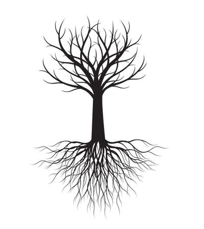 Shape of Tree with Roots. Vector outline Illustration. Plant in Garden.