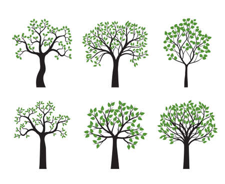 Set Trees and Leaves. Vector Illustration. Collection of icons.