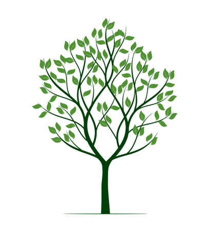 Shape of green Tree with Roots. Vector outline Illustration. Plant in Garden. 矢量图像