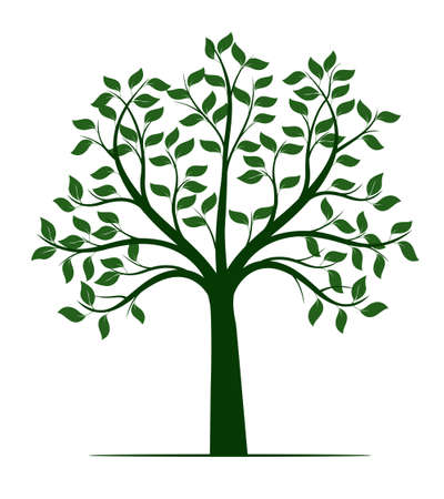 Shape of Tree with leaves and Roots. Vector outline Illustration. Plant in Garden. 向量圖像