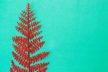 Tropical red leaf palm tree on a green background with space for text. Top view banner for travel agency. Flat lay Imagens