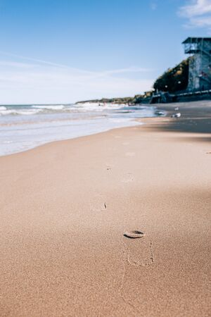 footprints of a person in the wet sand of a beach, sunny day.