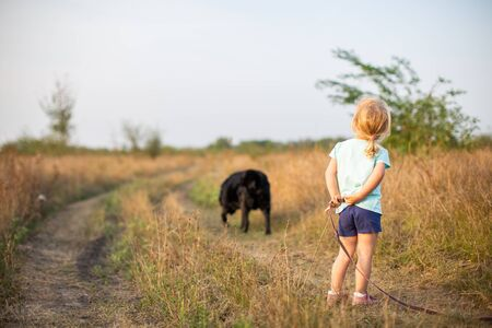 Little girl with black dog walking on the field back to camera in hot summer evening