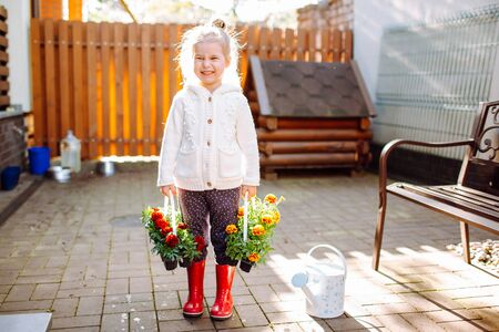 Little blonde smiling girl with two packs of marigold staying at her back yard. The girl is going to transplant flowers. Home gardening