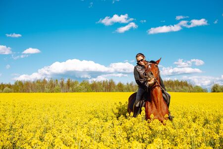 Young woman sitting on a brown horse in yellow rape or oilseed field with blue sky on background. Horseback riding. Space for text Stok Fotoğraf