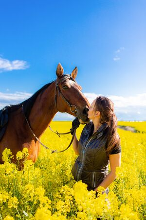 Young woman staying near brown horse in yellow rape or oilseed field with blue sky on background at sunny day. Horseback riding Stok Fotoğraf