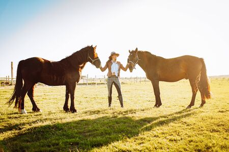 Beautiful young woman in a hat and gloves with two broun horses in a field on a sunset. Horseback riding Stok Fotoğraf