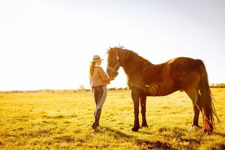 Beautiful smiling young woman in a hat and gloves playing with a broun horse in a field on a sunset. Horseback riding