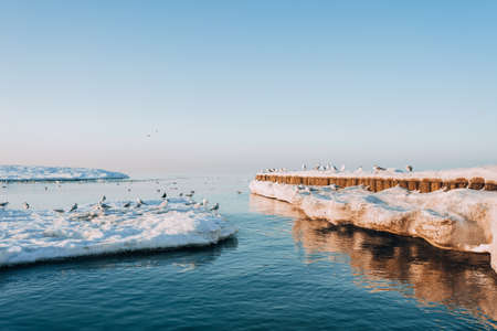 Winter coastal landscape with floating ice. Baltic sea in evening light. Banque d'images