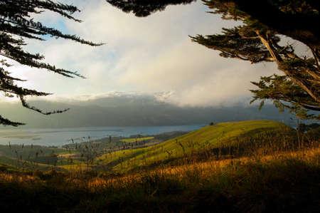 The Pastures of Otago Peninsula, New Zealand photo