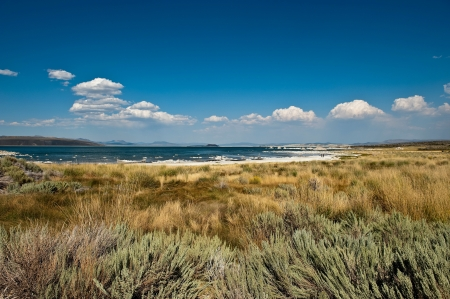 lee vining: White clouds over Mono Lake, California
