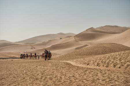 Dunhuang, China - 29 juni 2012: Kamelen safari op de zijderoute in Mingsha zandduinen buiten Dunhuang in de Gobi woestijn. Redactioneel