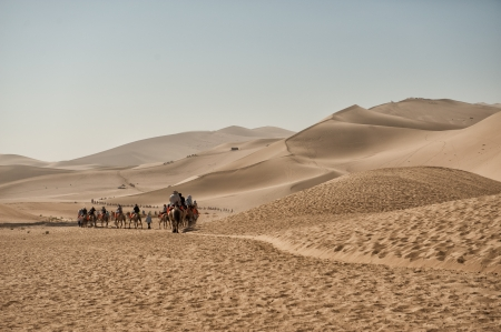Dunhuang, China - June 29, 2012: Camels safari on the silk road at Mingsha sand dunes outside Dunhuang in the Gobi desert.