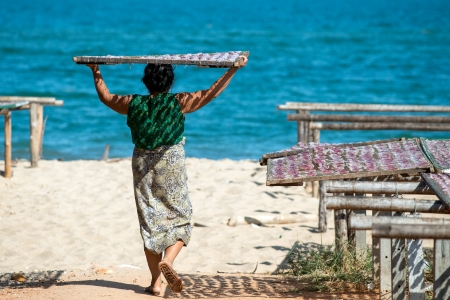 Hua Hin, Thailand - January 15, 2013: Thai woman carries a rack with squid on her head out into the sunshine for drying at the beach in Pak Nam Pran outside Hua Hin.