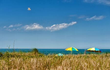 Summer at Martha s Vineyard - Seagull soaring over a beach at Martha s Vineyard on a sunny day photo