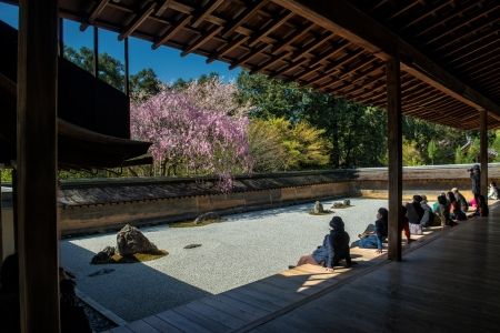 Kyoto, Japan - April 8, 2013: Tourists meditate in the famous Zen garden in the Ryoan-ji temple.