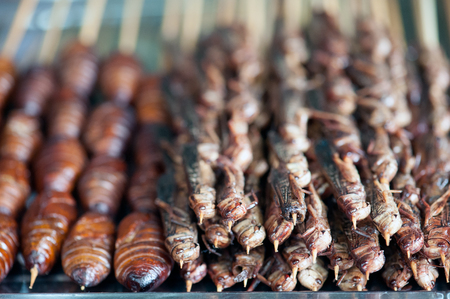 pupae: Chinese street food in the Hutongs of Beijing - roasted silkworm pupae and roasted grasshoppers Stock Photo
