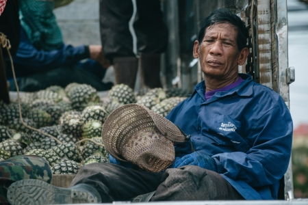 world   s largest: Hua Hin, Thailand � February 17, 2013    A tired farmworker rests on a truck bed with pineapples in Pranburi south of Hua Hin  Thailand is the world s largest pineapple producer  Editorial
