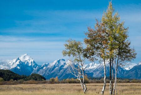 Autumn in Grand Teton National Park, Wyoming photo