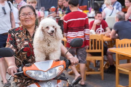 night market: Hua Hin, Thailand - January 18, 2015: Thai woman with a happy dog on motorbike at the night market in Hua Hin.  The famous night market in Hua Hin is a major tourist attraction.