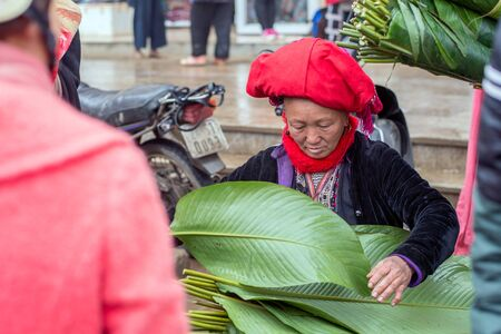 cultural diversity: Sapa, Vietnam - February 13, 2015: Red Dao woman selling dong leafs at a market in Sapa. Sapa is famous for its rugged scenery and its rich cultural diversity. Red Dao people is one of many  colorful tribes. Editorial